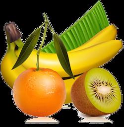 FruitMojis - Beautiful Fruit Stickers messages sticker-2