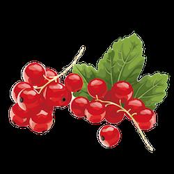 FruitMojis - Beautiful Fruit Stickers messages sticker-5