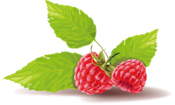 FruitMojis - Beautiful Fruit Stickers messages sticker-11