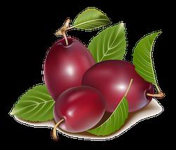 FruitMojis - Beautiful Fruit Stickers messages sticker-8
