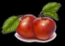 FruitMojis - Beautiful Fruit Stickers messages sticker-6