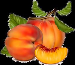 FruitMojis - Beautiful Fruit Stickers messages sticker-3