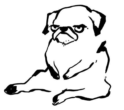 Thug Life & Pug Life Stickers messages sticker-11