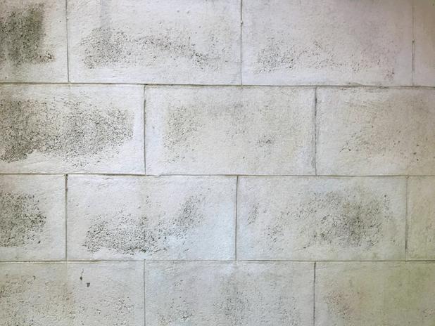 Walled messages sticker-9