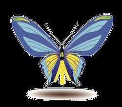 Butterfly Art Stickers messages sticker-7