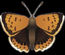 Butterfly Art Stickers messages sticker-4