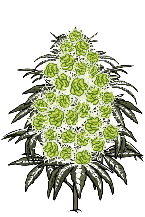 Bud Farm - Stickers messages sticker-6