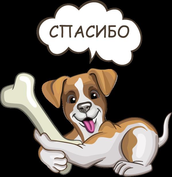 Джек Рассел - милая собачка messages sticker-6