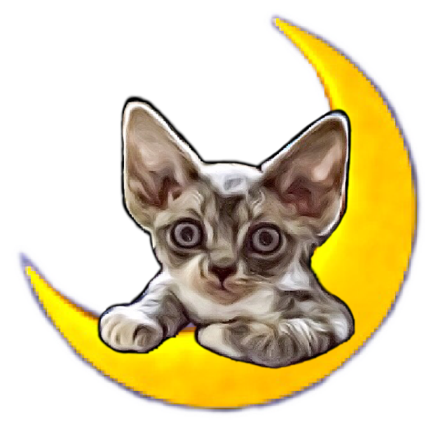 Littlest Devon Rex messages sticker-2