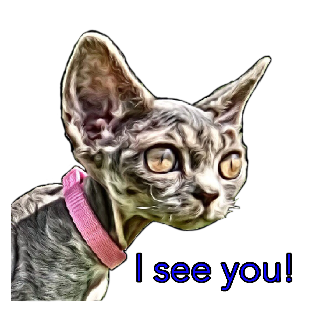 Littlest Devon Rex messages sticker-7
