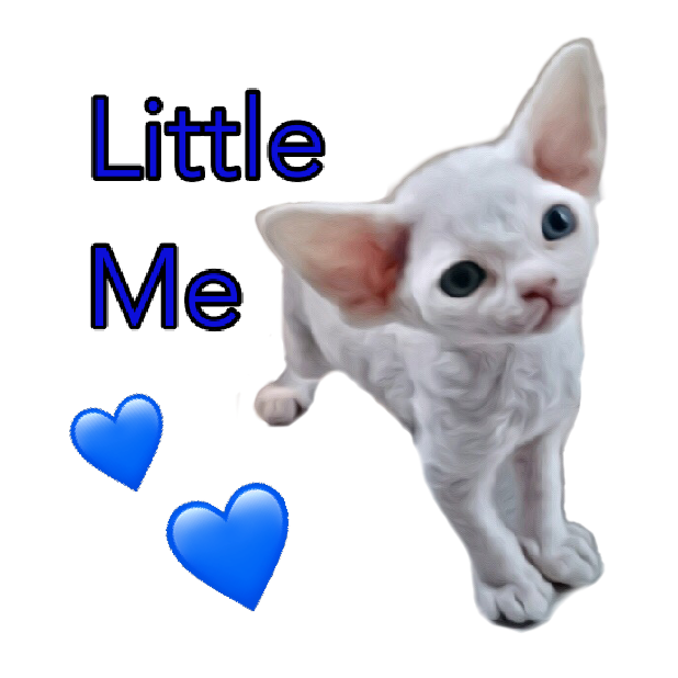 Littlest Devon Rex messages sticker-11