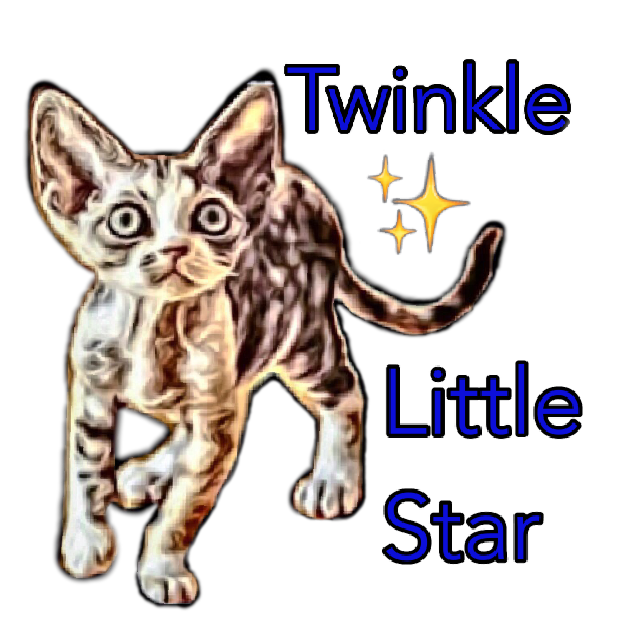 Littlest Devon Rex messages sticker-0