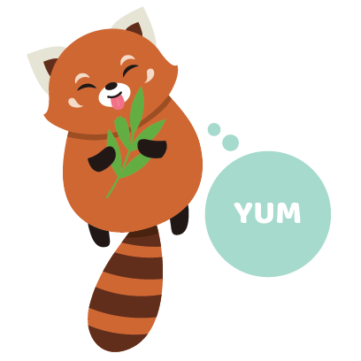 Red Panda Sticker Pack messages sticker-2