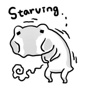 Daily Frog messages sticker-0