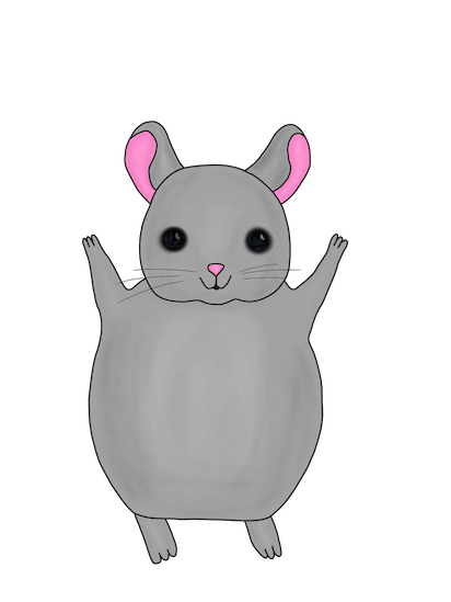 Little Chinchilla messages sticker-2