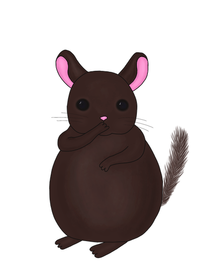 Little Chinchilla messages sticker-5