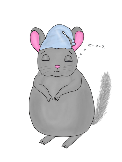 Little Chinchilla messages sticker-11