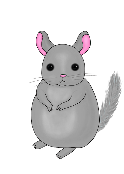 Little Chinchilla messages sticker-0