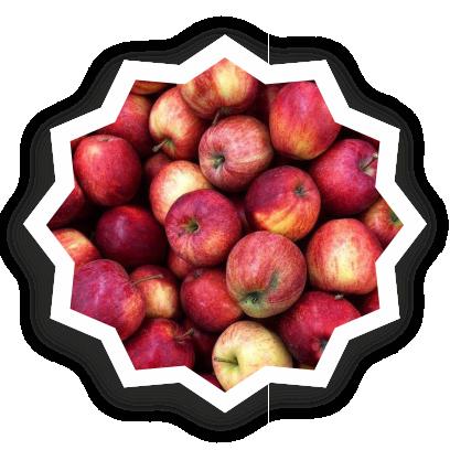 Beautiful fruits messages sticker-1
