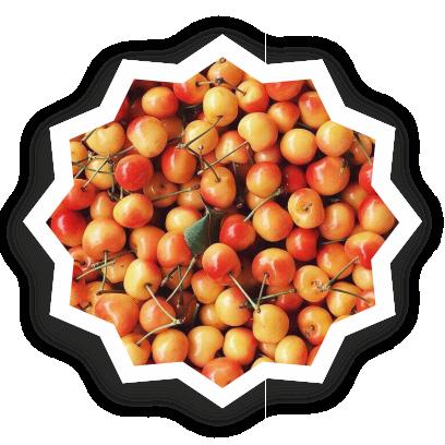 Beautiful fruits messages sticker-8