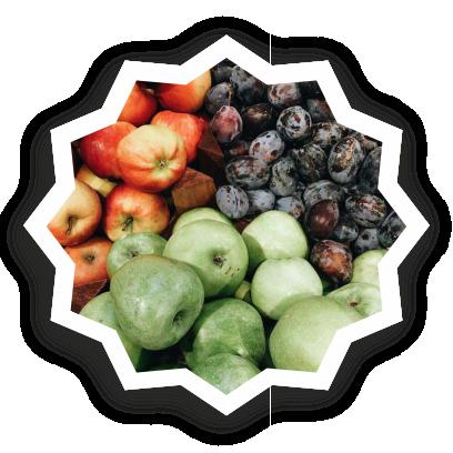 Beautiful fruits messages sticker-3