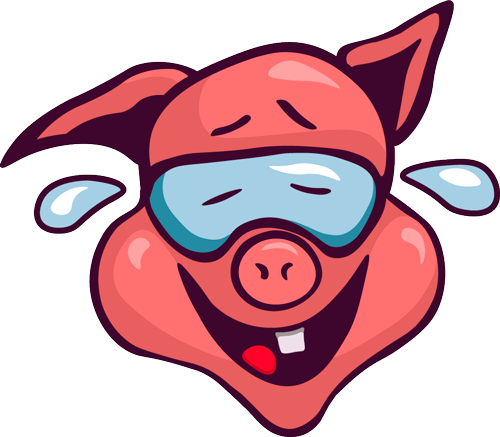 Pig - Cute stickers messages sticker-4