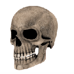 Skeleton emoji halloween messages sticker-3