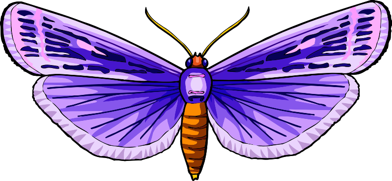 Butterfly Stickers: A Beauty Of Nature messages sticker-9
