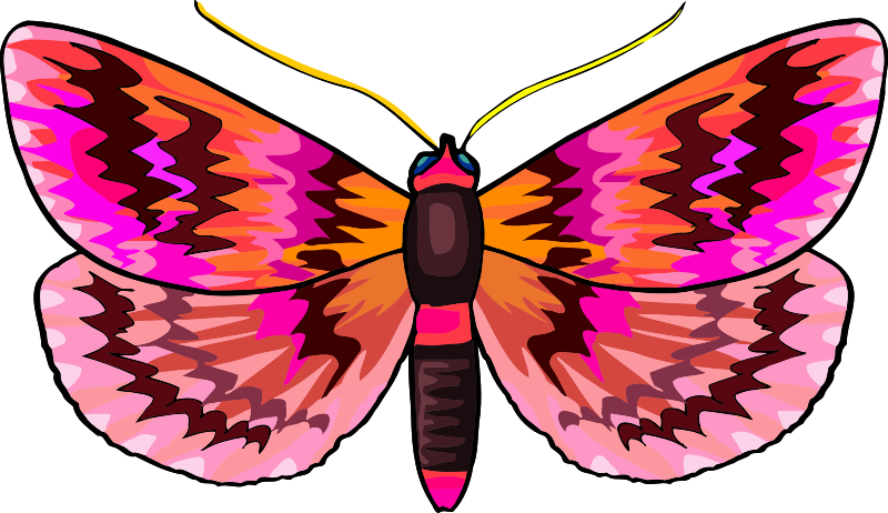 Butterfly Stickers: A Beauty Of Nature messages sticker-0