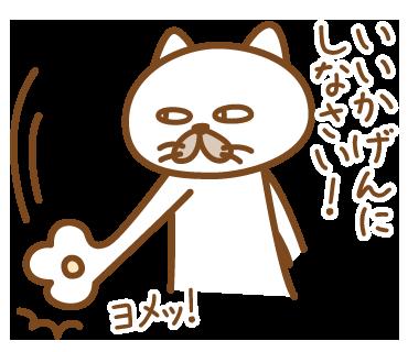 嫁がほしい猫 messages sticker-11