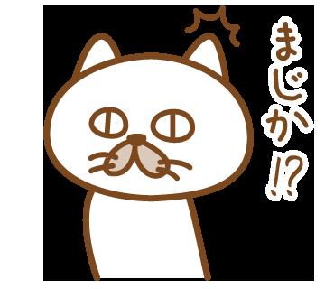 嫁がほしい猫 messages sticker-10