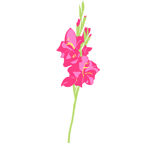 Sticky Flowers: Classic Set messages sticker-5