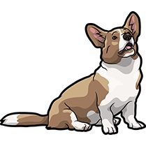 CorgiMojis - Corgi Emoji & Stickers messages sticker-8
