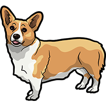 CorgiMojis - Corgi Emoji & Stickers messages sticker-4