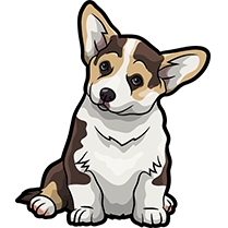 CorgiMojis - Corgi Emoji & Stickers messages sticker-5