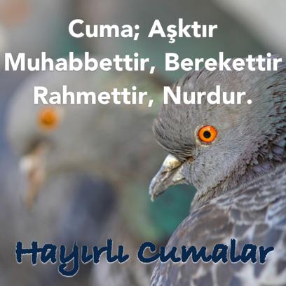 Cuma Mesajları - Resimli Kart Oluştur messages sticker-7