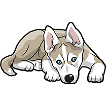 HuskyMoji - Husky Emoji & Sticker messages sticker-9