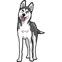 HuskyMoji - Husky Emoji & Sticker messages sticker-4