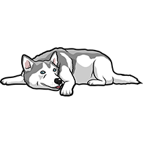 HuskyMoji - Husky Emoji & Sticker messages sticker-10