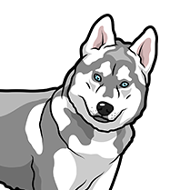 HuskyMoji - Husky Emoji & Sticker messages sticker-7
