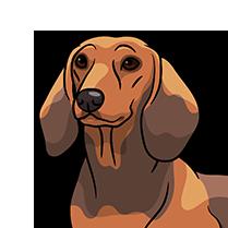 DachsMoji - Dachshund Emoji & Sticker messages sticker-10