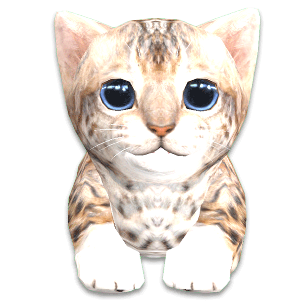 Cattery messages sticker-11
