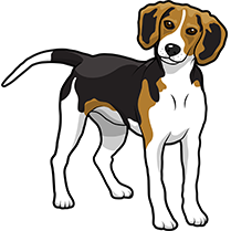 PitMoji - Dog Emoji & Stickers messages sticker-6