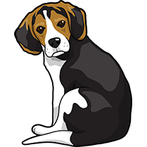 PitMoji - Dog Emoji & Stickers messages sticker-1