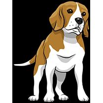 PitMoji - Dog Emoji & Stickers messages sticker-7