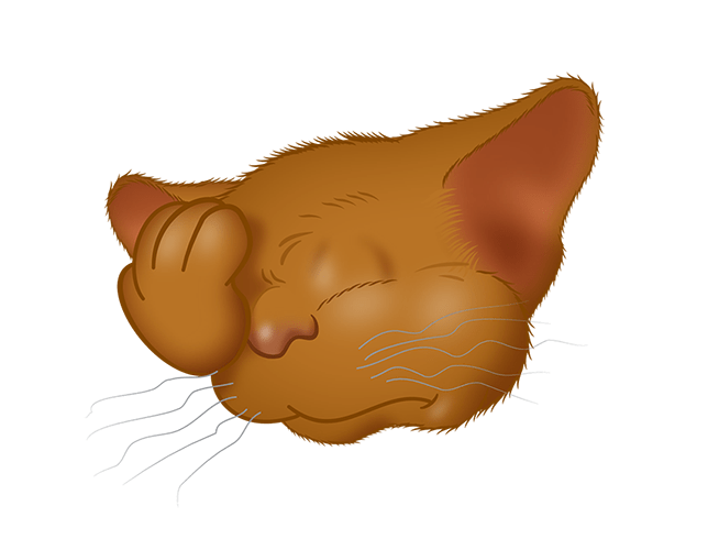 Brown Cat emoji messages sticker-6