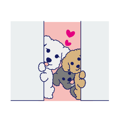 Happy Schnauzer and Toypoodle messages sticker-9