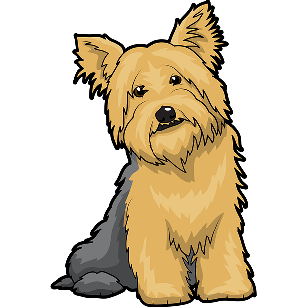 Yorkie Emojis For Dog lovers messages sticker-4
