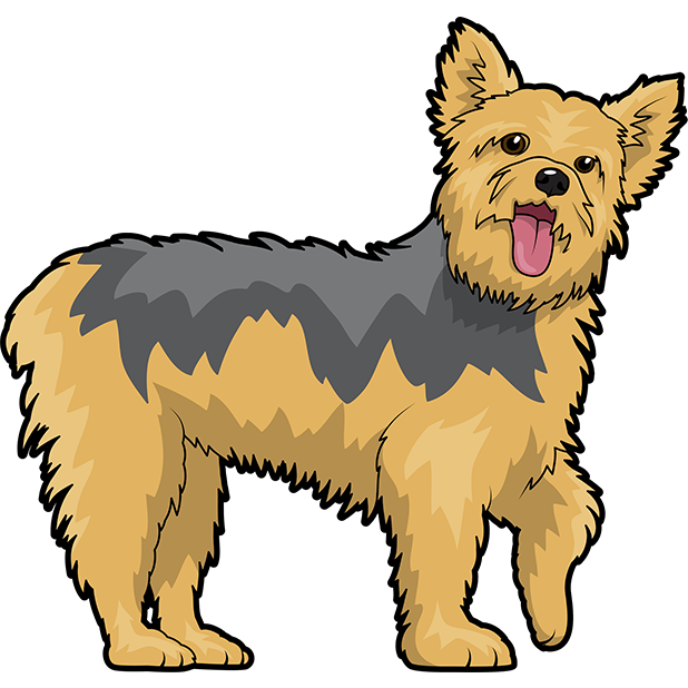 Yorkie Emojis For Dog lovers messages sticker-3