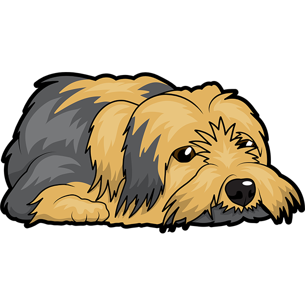 Yorkie Emojis For Dog lovers messages sticker-6